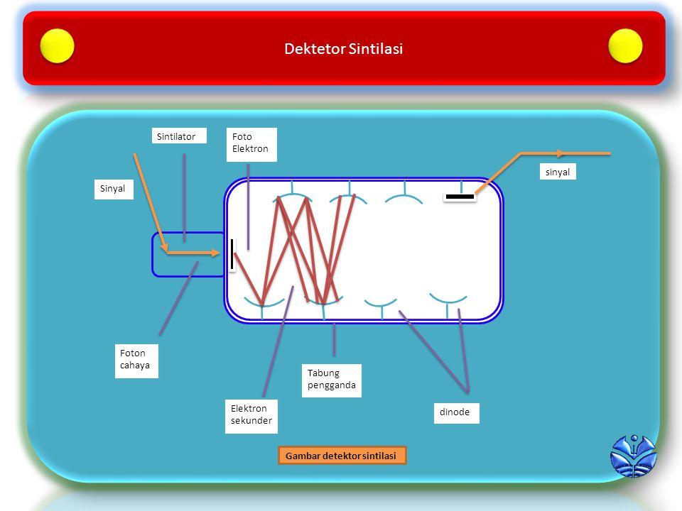 Dektetor Sintilasi dinode Tabung pengganda Elektron sekunder sinyal