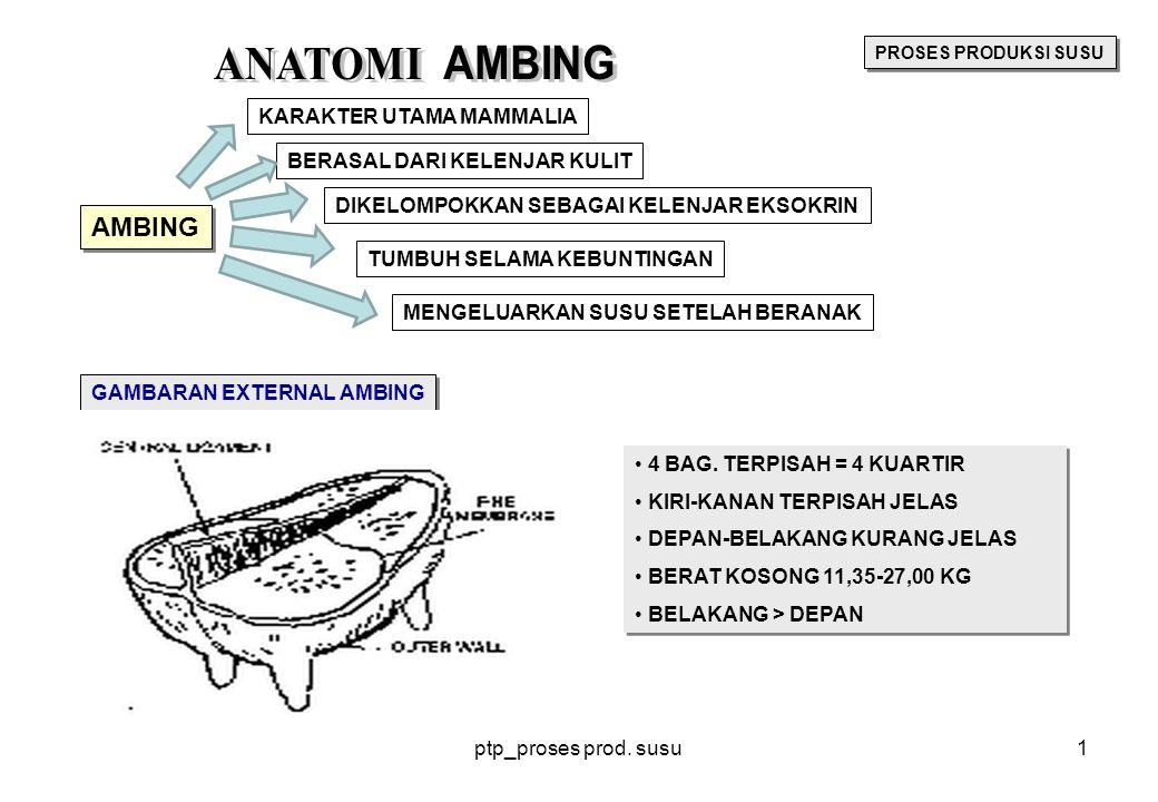 ANATOMI AMBING AMBING KARAKTER UTAMA MAMMALIA