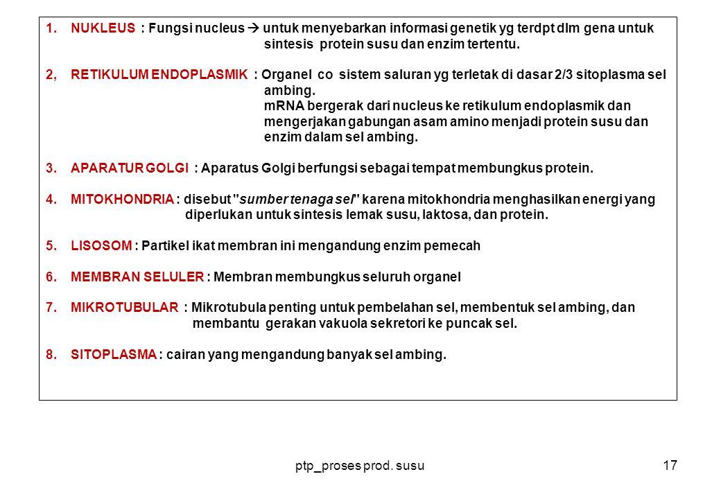 NUKLEUS : Fungsi nucleus  untuk menyebarkan informasi genetik yg terdpt dlm gena untuk