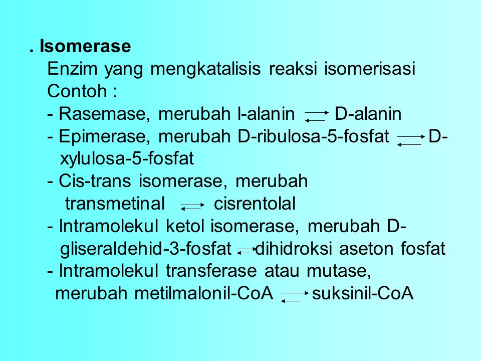 . Isomerase Enzim yang mengkatalisis reaksi isomerisasi. Contoh : - Rasemase, merubah l-alanin D-alanin.