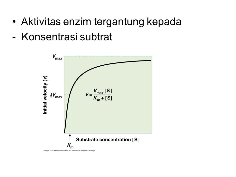 Aktivitas enzim tergantung kepada
