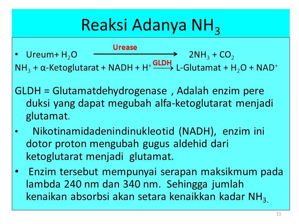 Reaksi Adanya NH3 Ureum+ H2O 2NH3 + CO2.