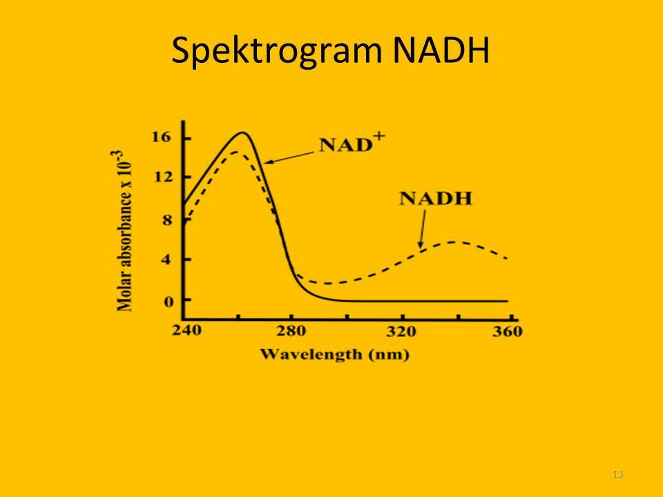 Spektrogram NADH