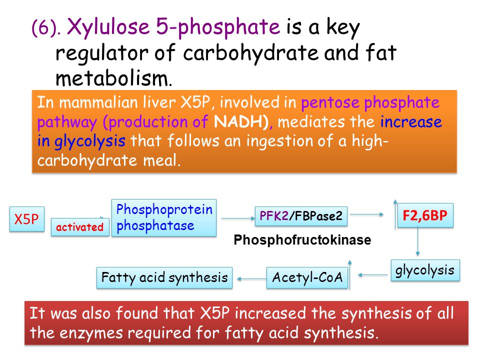 (6). Xylulose 5-phosphate is a key regulator of carbohydrate and fat metabolism.