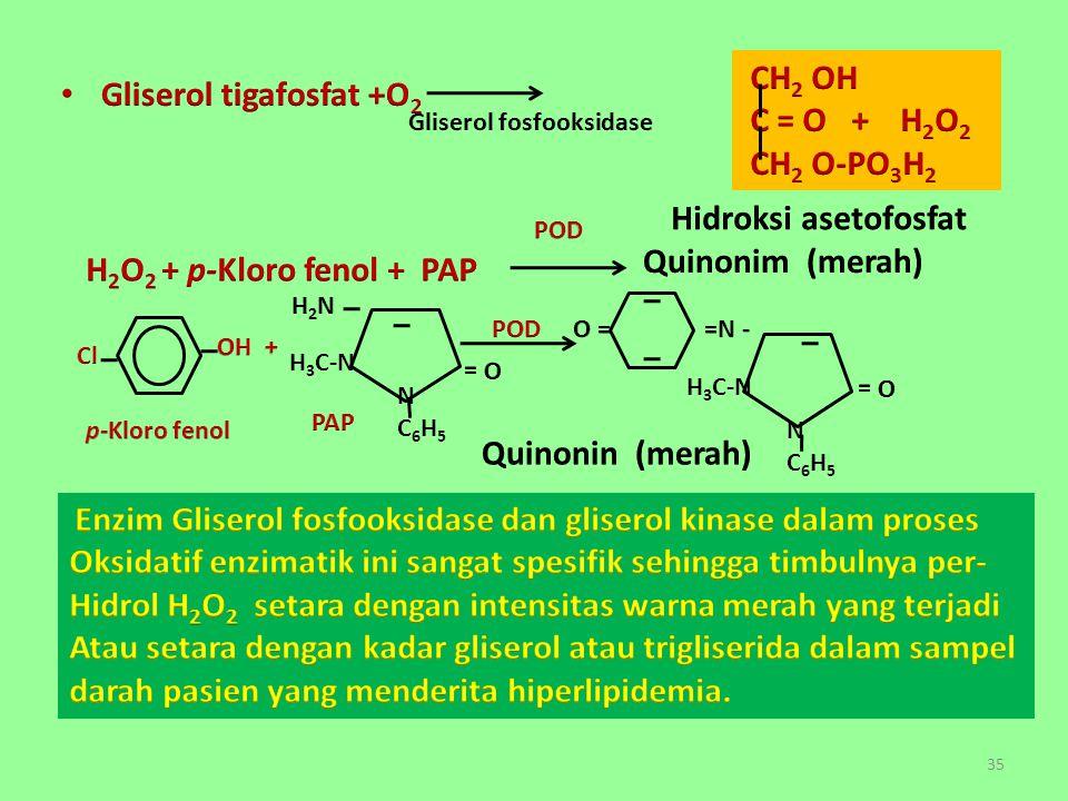 Gliserol fosfooksidase