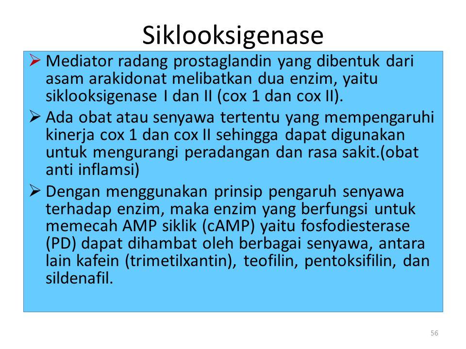 Siklooksigenase