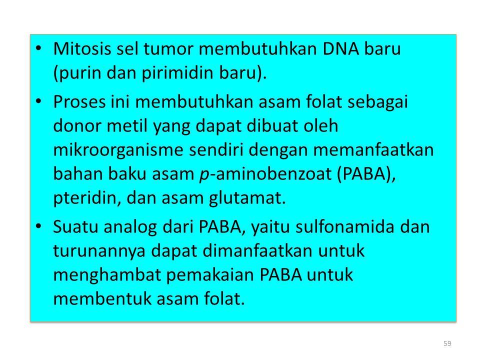 Mitosis sel tumor membutuhkan DNA baru (purin dan pirimidin baru).