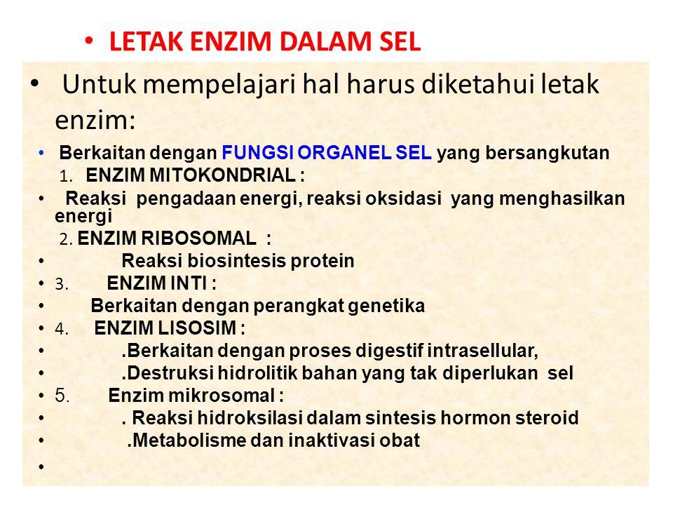 Untuk mempelajari hal harus diketahui letak enzim: