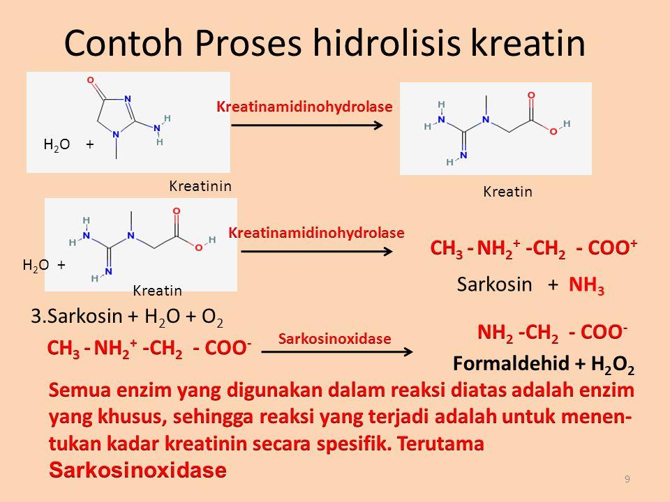 Contoh Proses hidrolisis kreatin