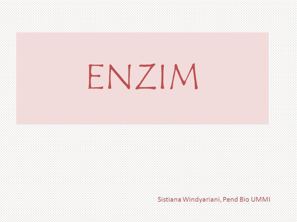 Sistiana Windyariani, Pend Bio UMMI