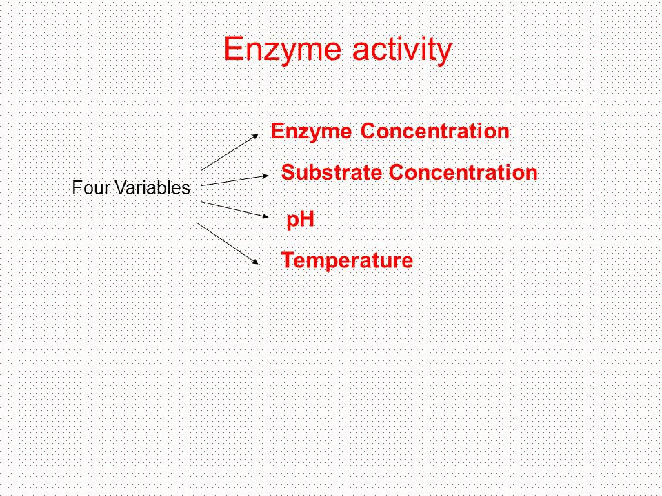 Enzyme activity Enzyme Concentration Substrate Concentration pH