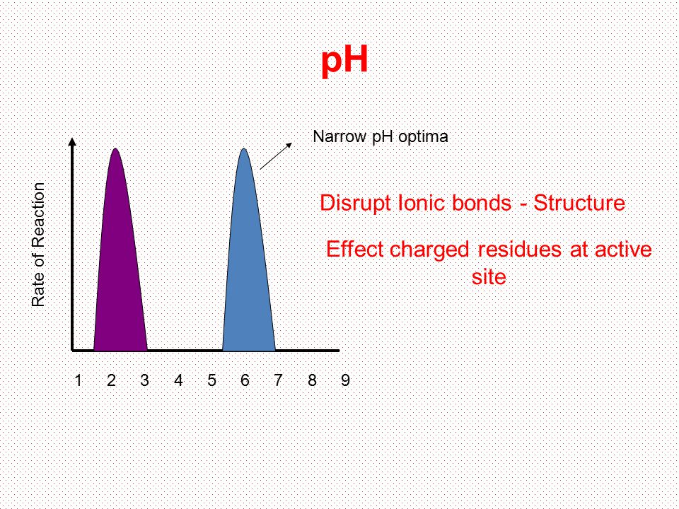 Effect charged residues at active