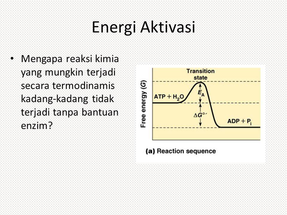 Energi Aktivasi Mengapa reaksi kimia yang mungkin terjadi secara termodinamis kadang-kadang tidak terjadi tanpa bantuan enzim