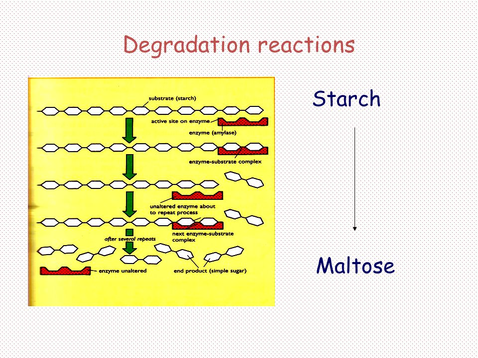 Degradation reactions
