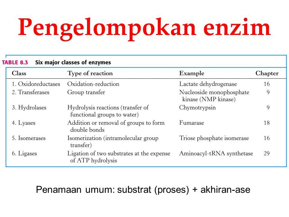 Pengelompokan enzim Penamaan umum: substrat (proses) + akhiran-ase