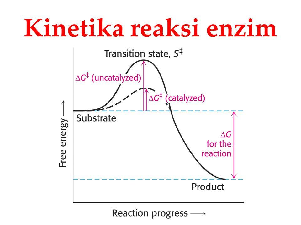 Kinetika reaksi enzim
