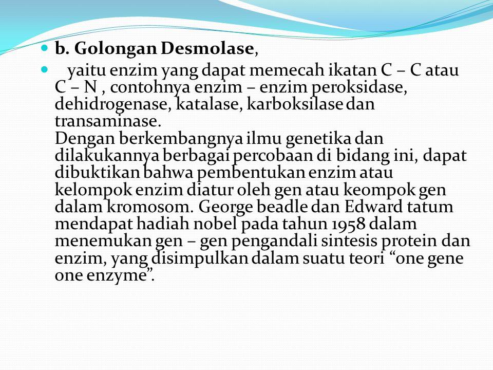 b. Golongan Desmolase,