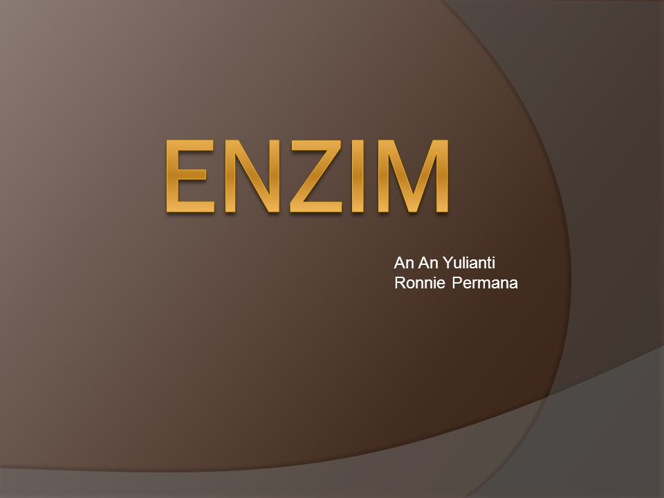 ENZIM An An Yulianti Ronnie Permana