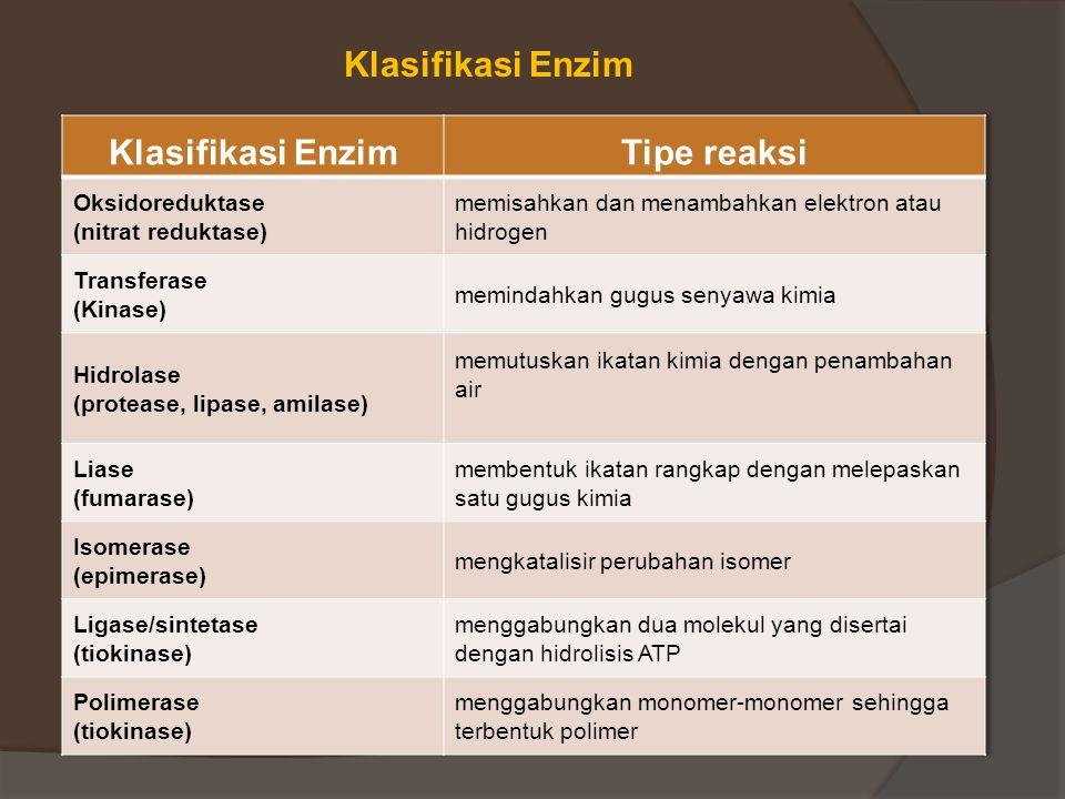 Klasifikasi Enzim Klasifikasi Enzim Tipe reaksi