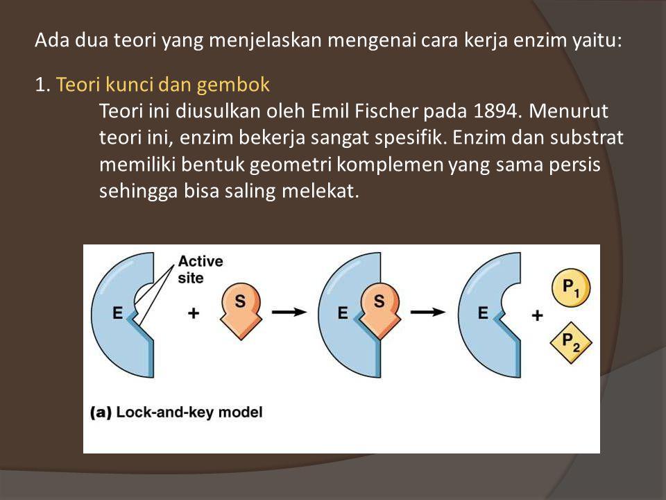 Teori kunci dan gembok Teori ini diusulkan oleh Emil Fischer pada 1894