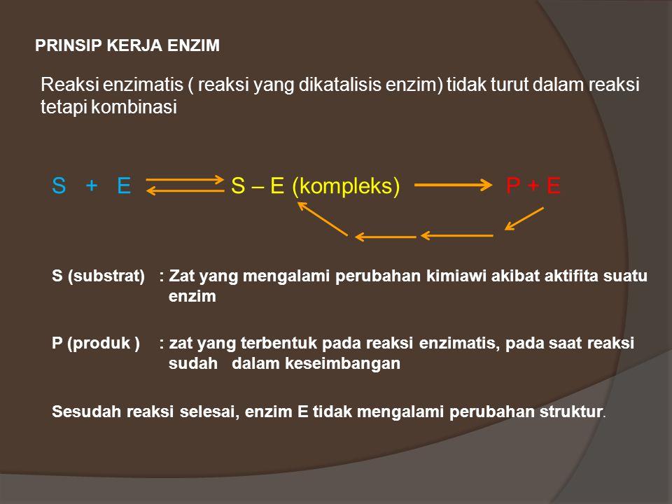 PRINSIP KERJA ENZIM Reaksi enzimatis ( reaksi yang dikatalisis enzim) tidak turut dalam reaksi tetapi kombinasi.