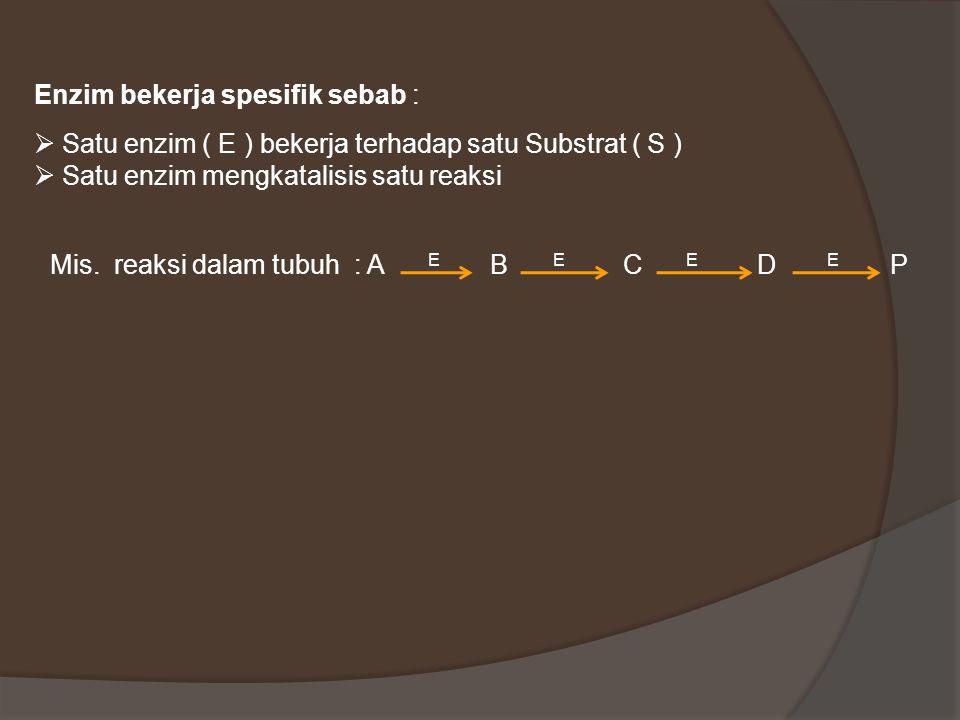 Enzim bekerja spesifik sebab :