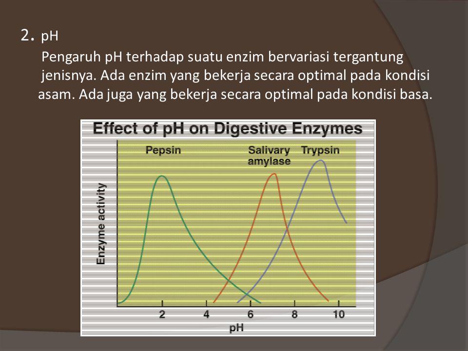 2. pH Pengaruh pH terhadap suatu enzim bervariasi tergantung