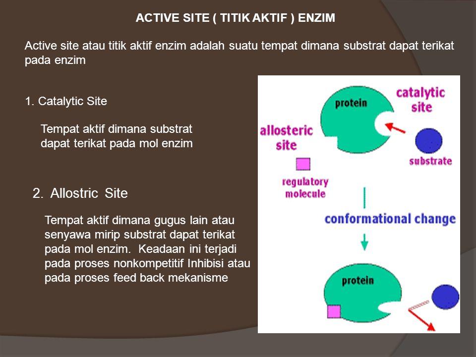 2. Allostric Site ACTIVE SITE ( TITIK AKTIF ) ENZIM