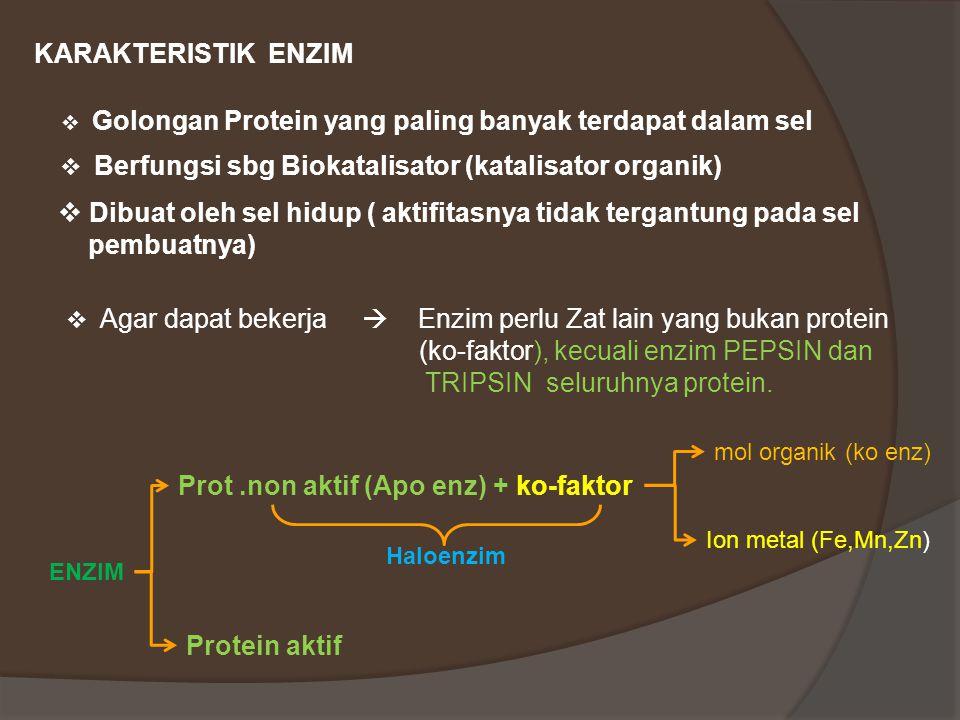 Dibuat oleh sel hidup ( aktifitasnya tidak tergantung pada sel
