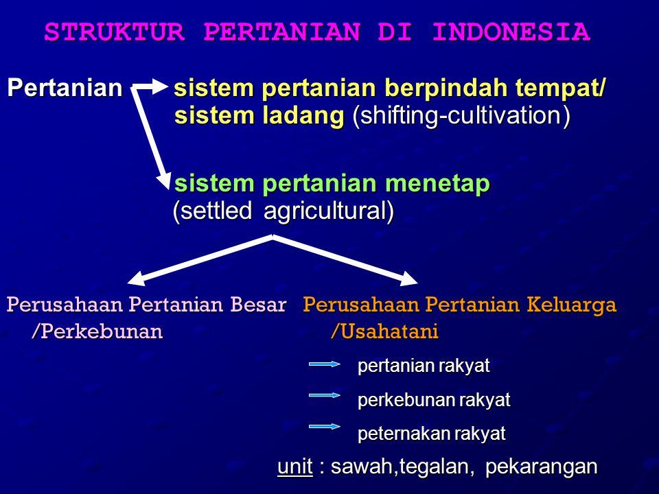STRUKTUR PERTANIAN DI INDONESIA