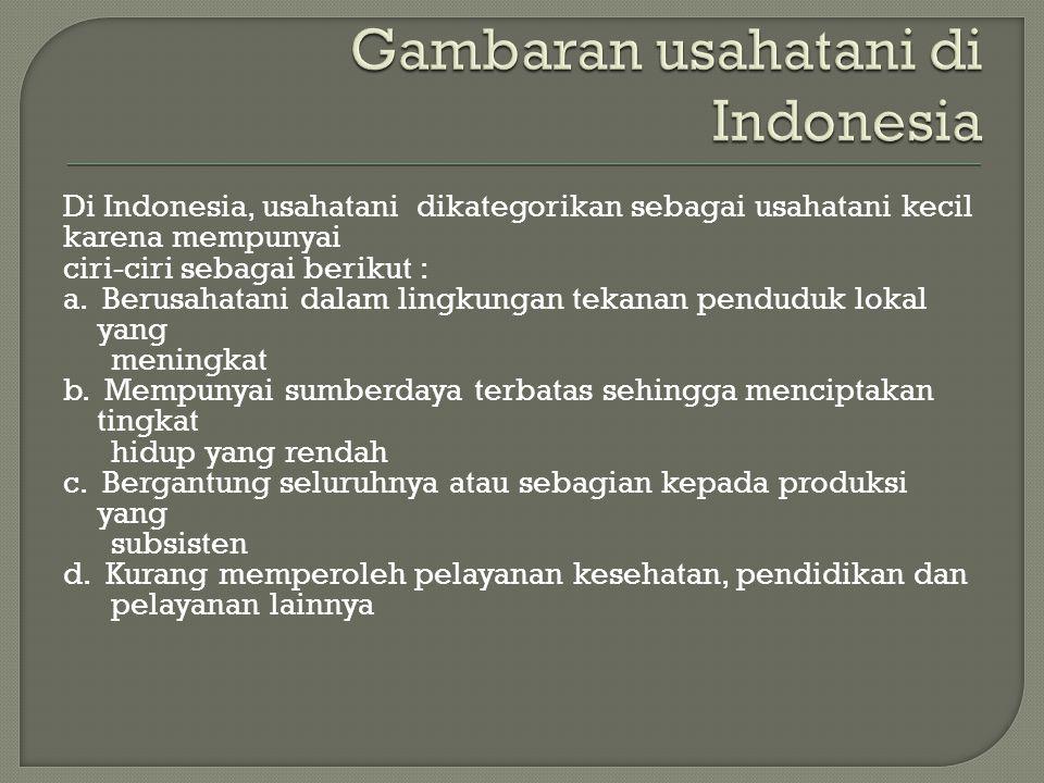 Gambaran usahatani di Indonesia
