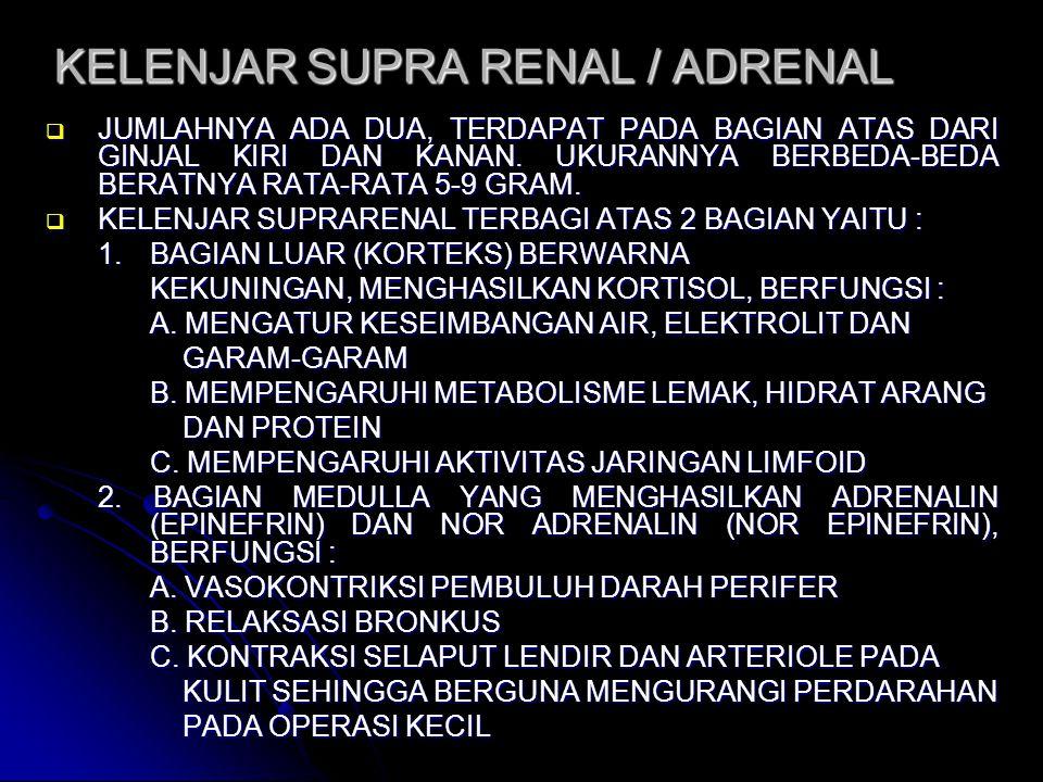 KELENJAR SUPRA RENAL / ADRENAL