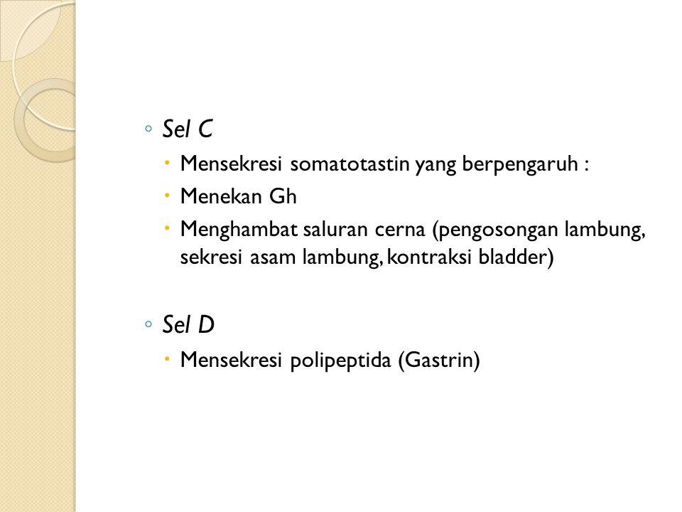 Sel C Sel D Mensekresi somatotastin yang berpengaruh : Menekan Gh