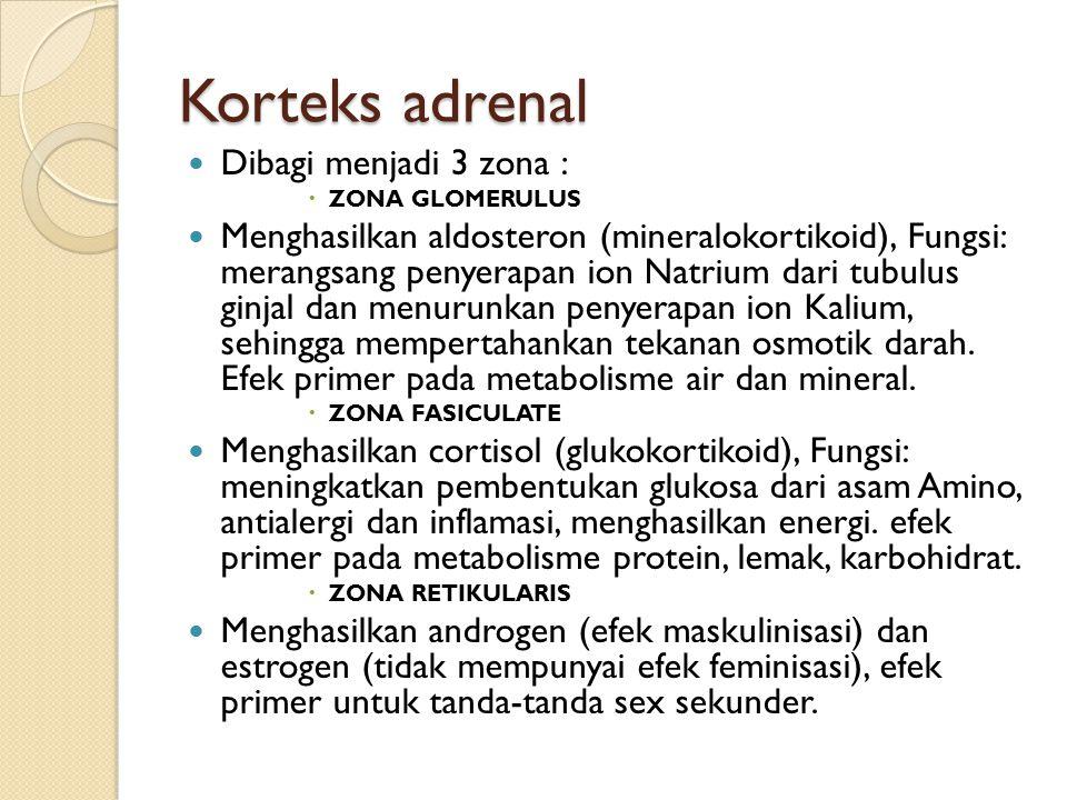 Korteks adrenal Dibagi menjadi 3 zona :