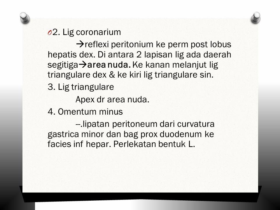 2. Lig coronarium