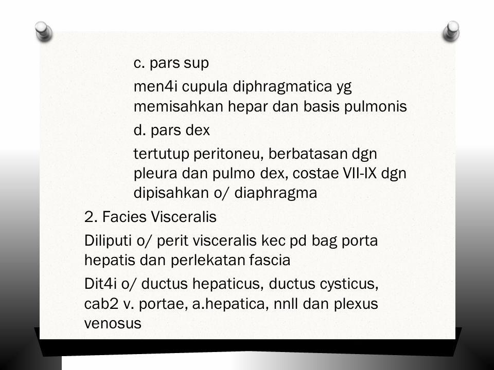 c. pars sup men4i cupula diphragmatica yg memisahkan hepar dan basis pulmonis d.