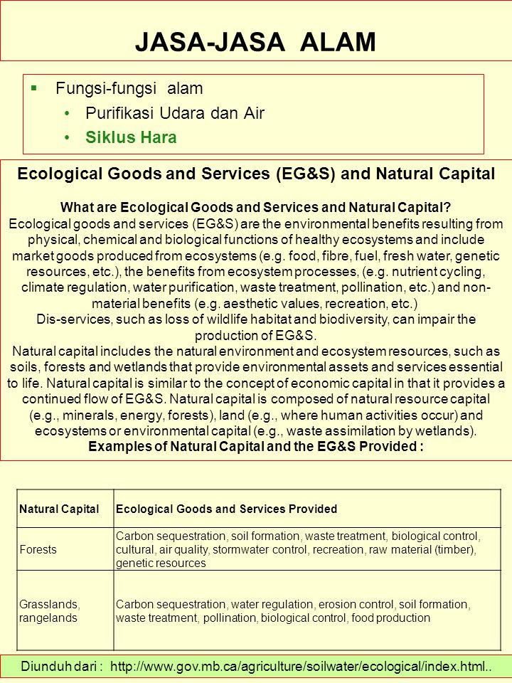 JASA-JASA ALAM Fungsi-fungsi alam Purifikasi Udara dan Air Siklus Hara