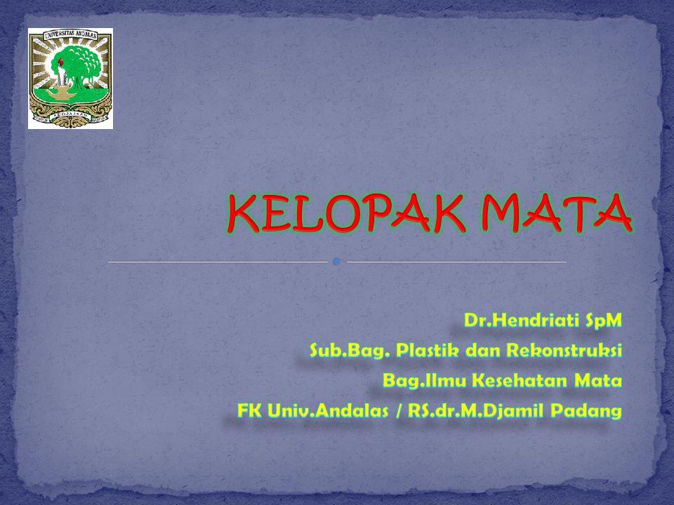 KELOPAK MATA Dr.Hendriati SpM Sub.Bag. Plastik dan Rekonstruksi