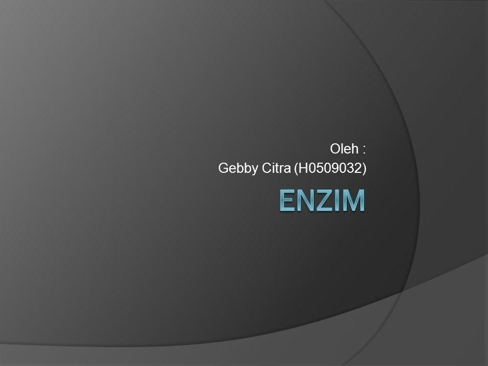 Oleh : Gebby Citra (H0509032) ENZIM