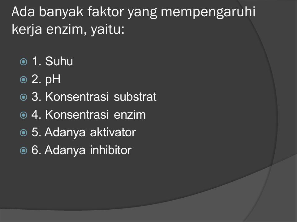 Ada banyak faktor yang mempengaruhi kerja enzim, yaitu: