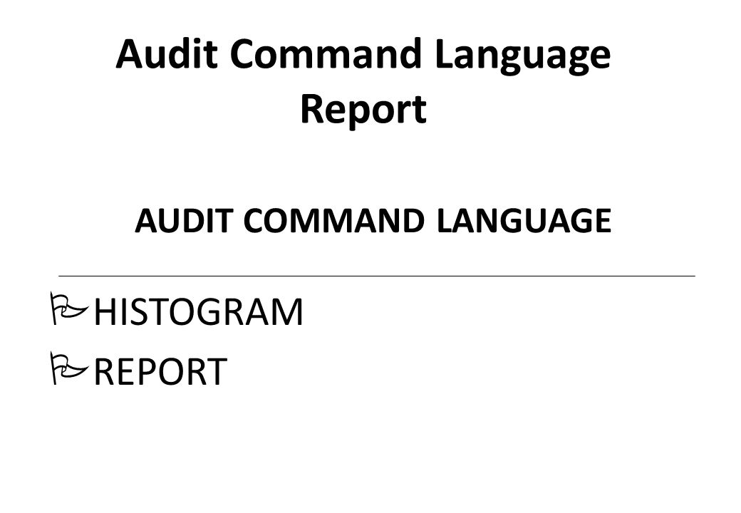 Audit Command Language Report