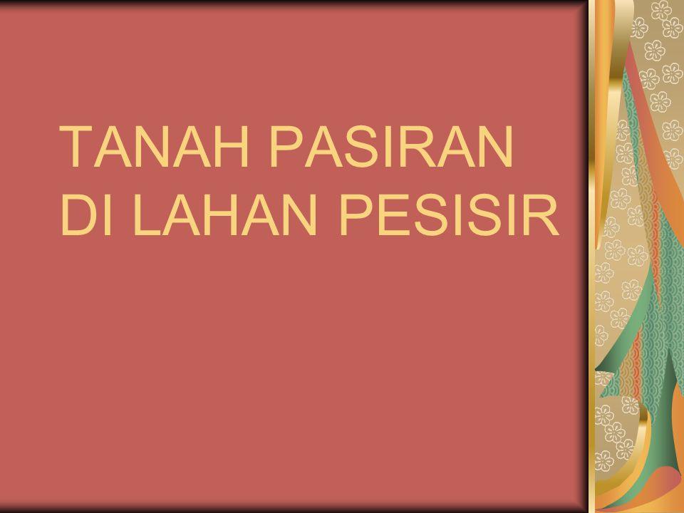 TANAH PASIRAN DI LAHAN PESISIR