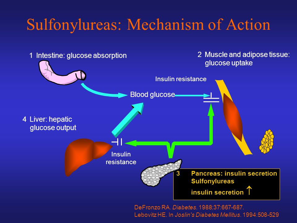 Sulfonylureas: Mechanism of Action