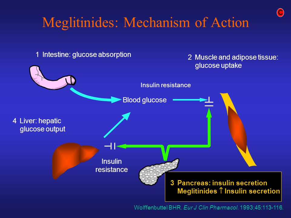 Meglitinides: Mechanism of Action