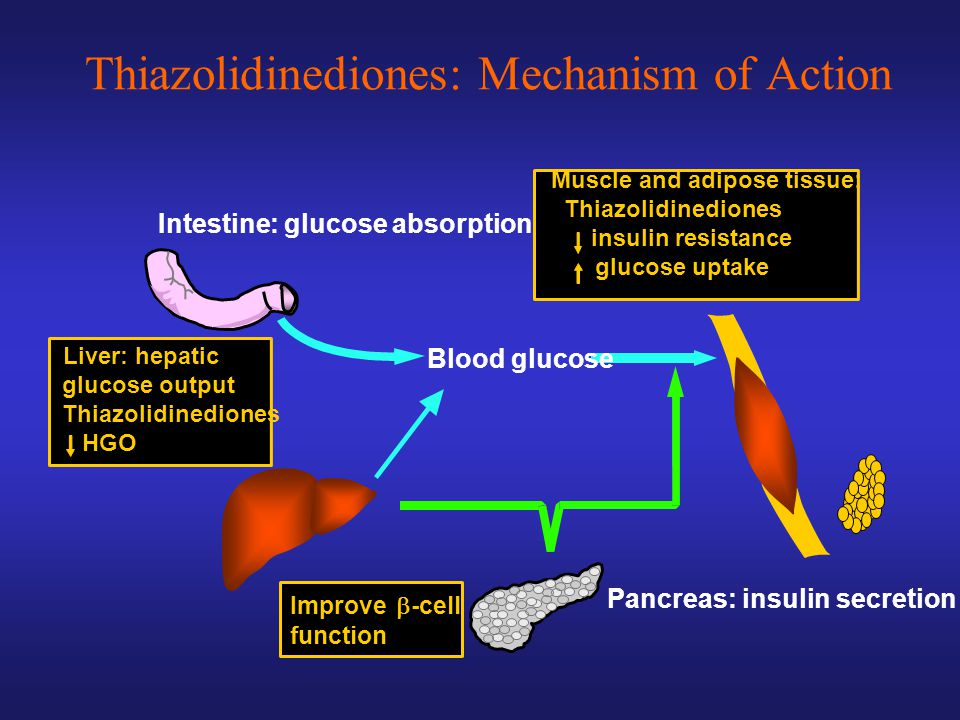 Thiazolidinediones: Mechanism of Action