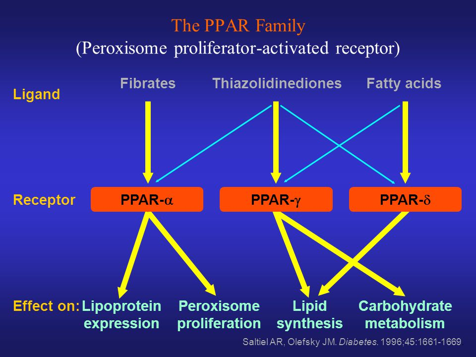 The PPAR Family (Peroxisome proliferator-activated receptor)