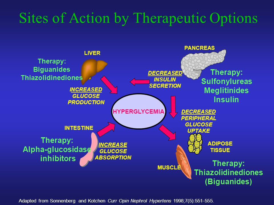 Sites of Action by Therapeutic Options