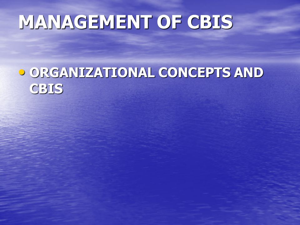 MANAGEMENT OF CBIS ORGANIZATIONAL CONCEPTS AND CBIS