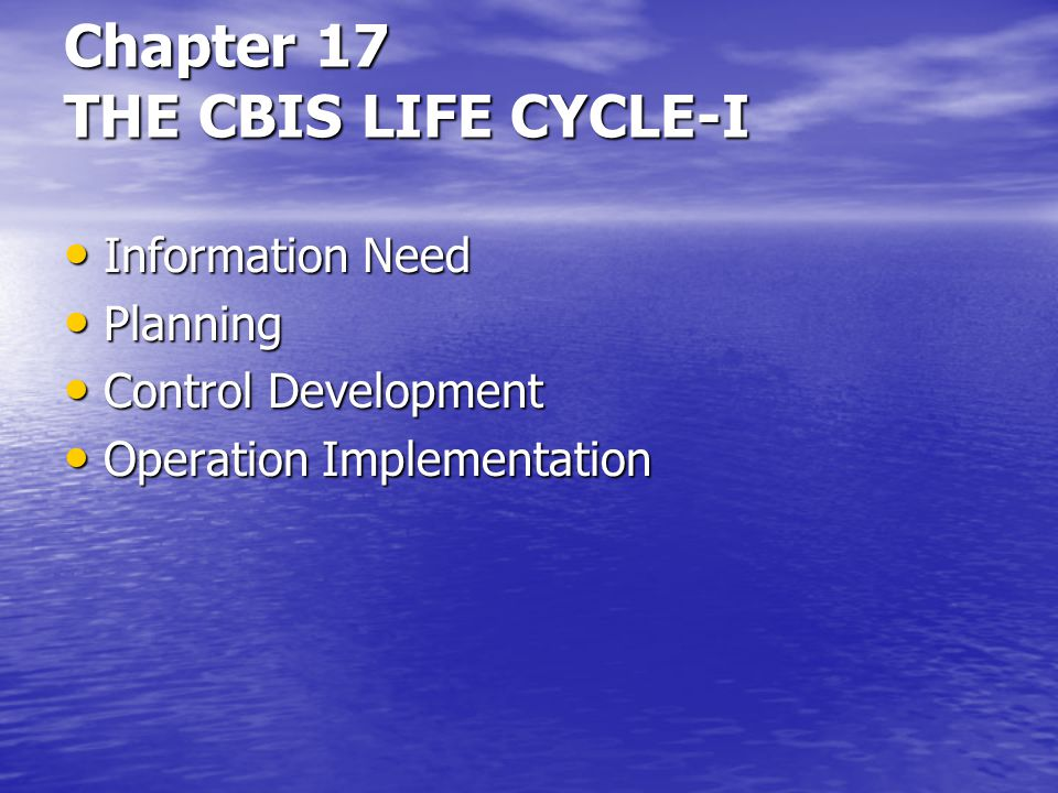 Chapter 17 THE CBIS LIFE CYCLE-I