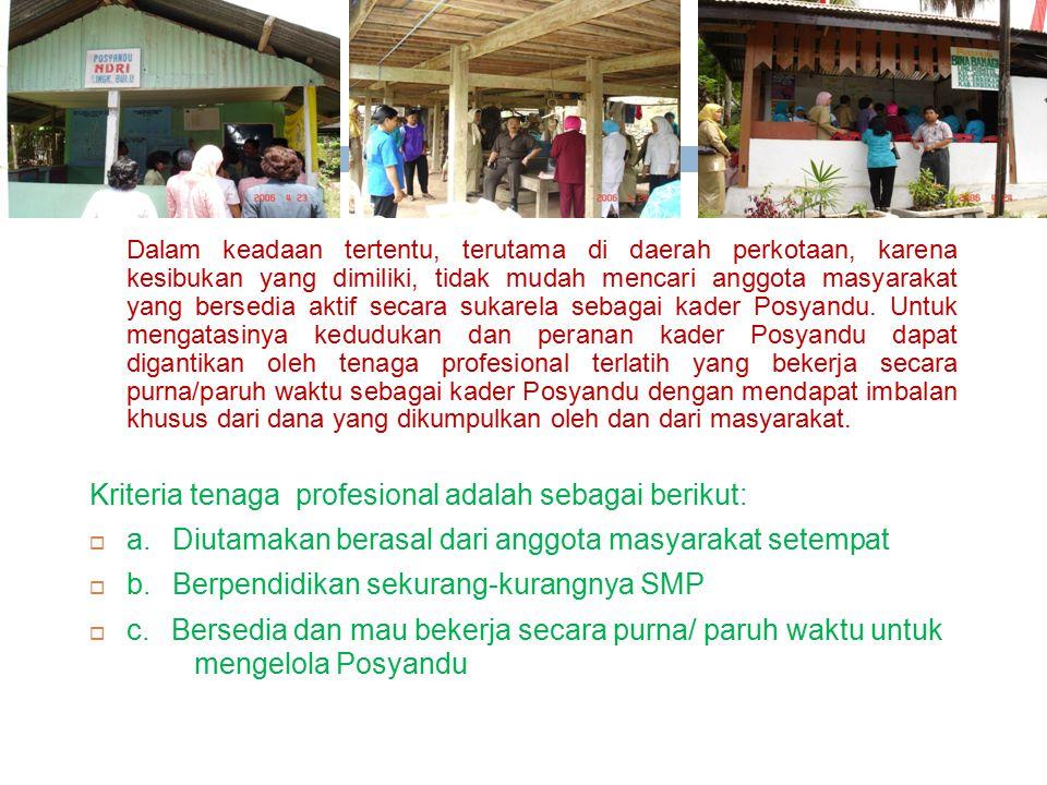 Kriteria tenaga profesional adalah sebagai berikut: